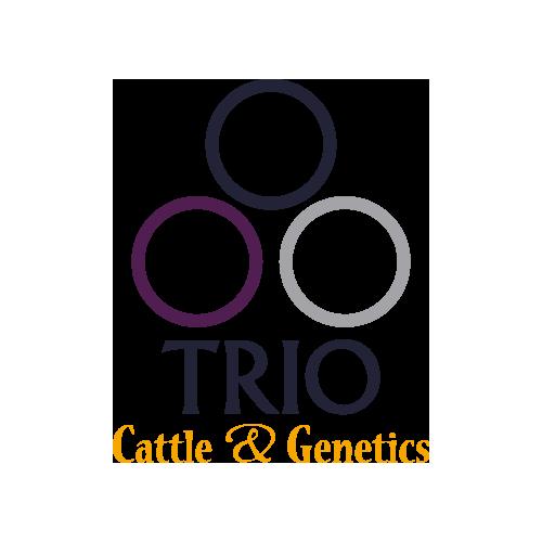 TRIO Cattle & Genetics